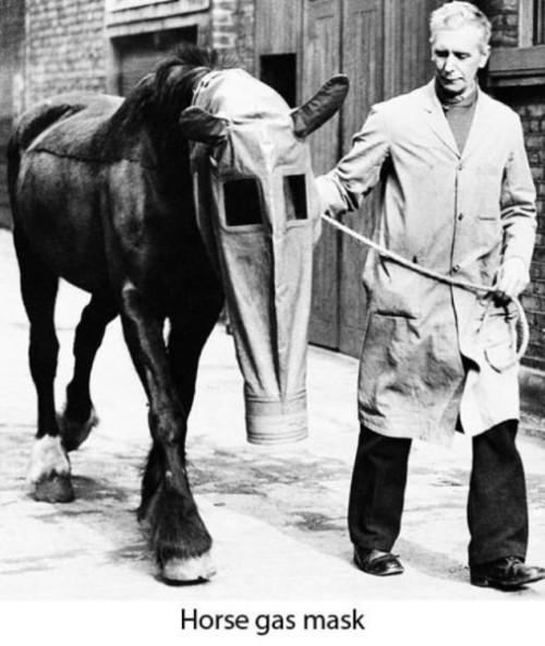 horsegasmask